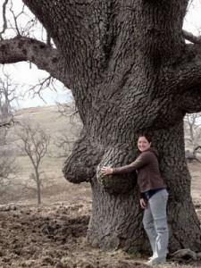 ne saya ambil asli lo gan...!! tuch poto kakak ipar q...!! pohon nya berbentuk payudara wanita w0w yeah...!!