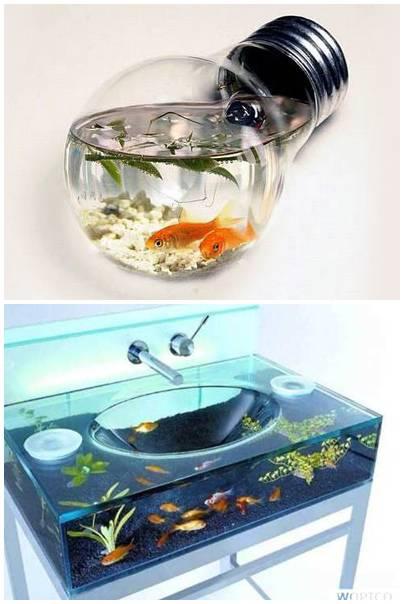 aquarium unik dan kreatif