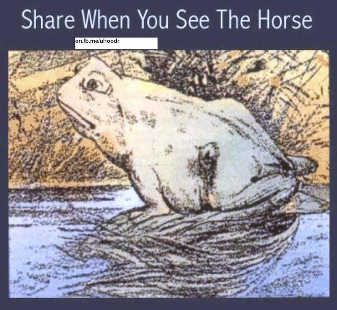 siapa yang bisa melihat gambar kuda yang ada di katak ini jangan lupa wownya yha
