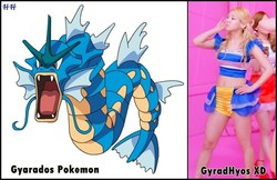 Gyarados Pokemon Vs. GyradHyos....LOL...hahahah...