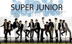 Biodata masing-masing member SUPER JUNIOR
