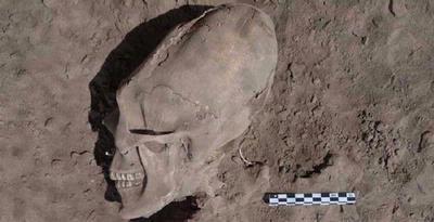 Tengkorak mirip ALIEN di temukan di Meksiko