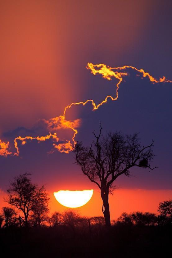Sunset In Kruger National Park, South Africa.
