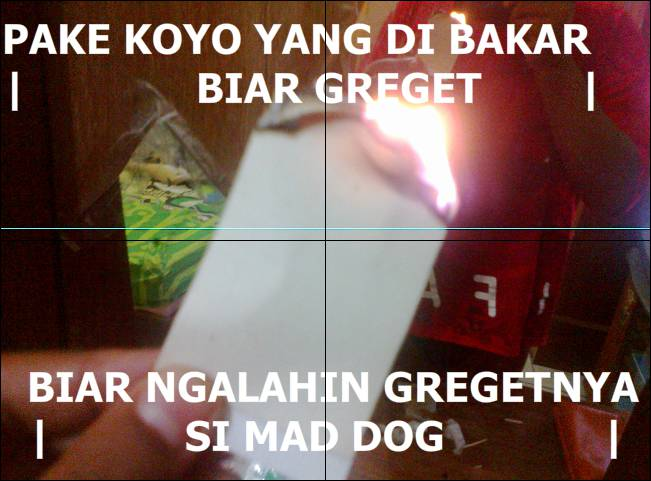 gw mw nglalahin mad dog !!!