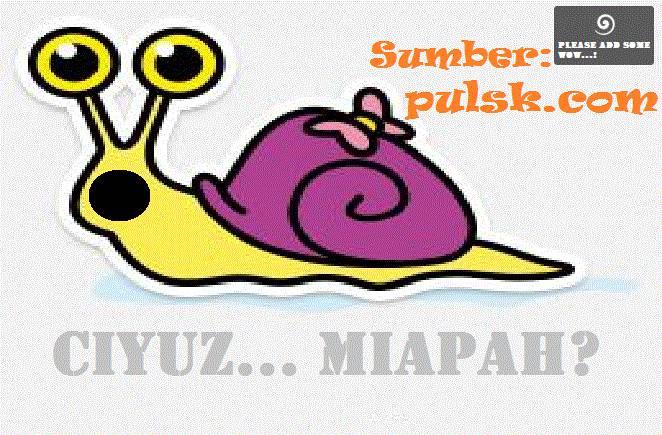 Pliz Add some Wow Yakh... Pulsker!:D