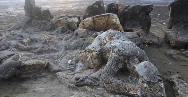 Batu Malin Kundang di Pantai Air Manis, Padang - Sumatera Barat
