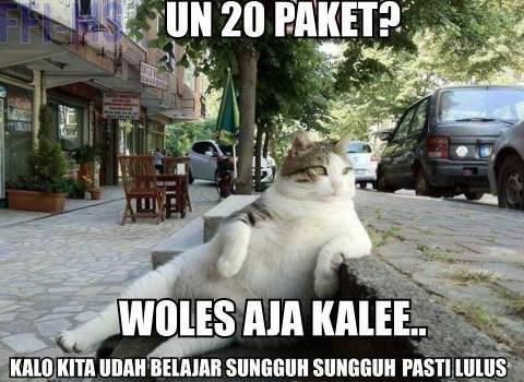 WOLES aja :D