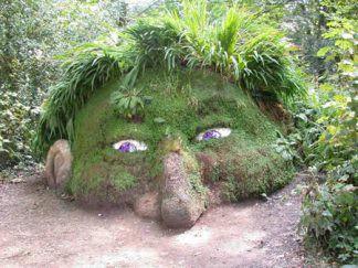 Rumput yng menutupi batu ini mirip sekali dengan wajah seseorang Klik wow -Nya yha,,,, :-)