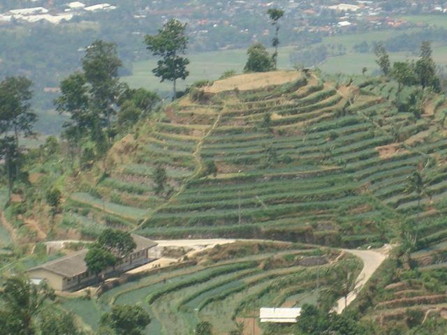 Bukit indah di Umbulsidomukti Kab. Semarang Jawa Tengah