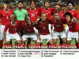 the next timnas indonesia