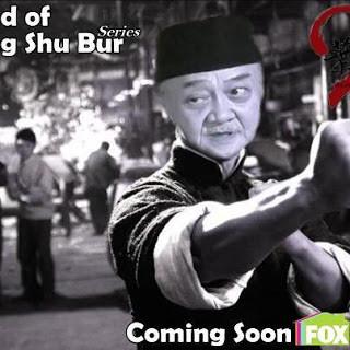 zubur ip WING CHUN SANTET
