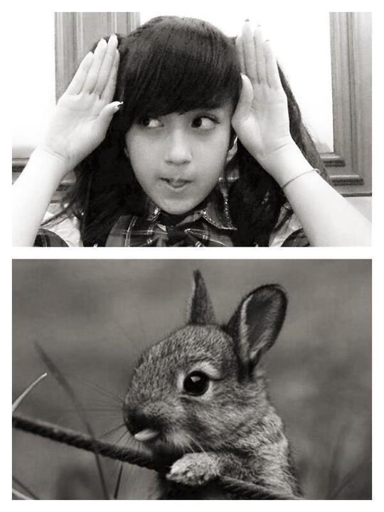 imutan mana ...? nabila apa kelinci..?