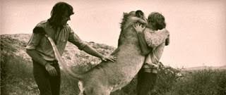 singa aja bisa berpelukan masa kita gak