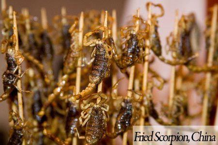 Fried scorpion dan beberapa streed food snack unik lainnya bisa kamu temui di Cina. Berani kah kamu makan ini?
