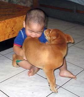 Extreme banget foto lucu dibawah ini. Seorang anak yang justrus menggikit anjing. Jadi kebalik dech !!