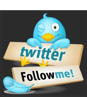 <3 Twitter <3 Hai, PULSKER ;) Follow me yukk ;) @AryaRizka Nanti di follback loh ;) suer, ciyus :D Sling tmbah followers gituh.. :) Jngan lupa ya... Di tunggu :*