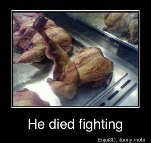 ayam kungfu he died fighting