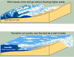 5 Bencana Yang Sering Menimbulkan Korban Jiwa : 1.Gempa Bumi 2.Tsunami 3.Badai/Topan/Puting Beliung 4.Banjir 5.Gunung Meletus * WOW-nya dong PULSKers! ^_^