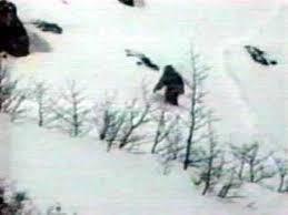 * Heboh!!! Penampakan Yeti Diantara Salju Di Spanyol! Yeti tersebut tampak mirip Gorilla! Apa yg sebenarnya ada di gambar tersebut? Apakah beneran Yeti atau Hanya Sekedar Hewan Biasa? Catatan : Yeti Adalah Hewan Langka Yg Masih Menjadi Misteri
