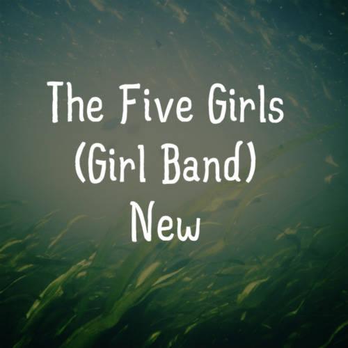 Sobat Pulsk :) Ini Grup Girl Band Fanspage nya The Five Girls_Official Lagi Cari 3 Personel jangan lupa wow nya ya kan dah di kasi info tapi ini untuk perempuan aja