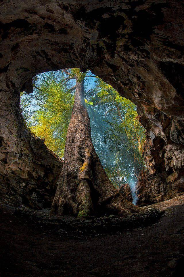 Rancang Kencana cave, Playen - Gunungkidul.