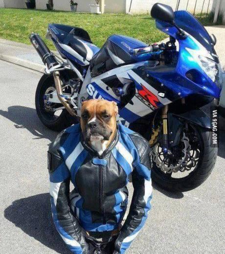 sulit untuk di jelaskan, ceritanya panjang. ,, :) hehe.. lets bike.. #for more http://www.pulsk.com/u/134585