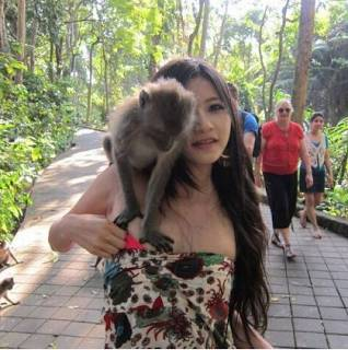 Lihat Monyet ini -_- Terasa Sedang Memgang Buah Melon .. kawkwakawkaw Bila anda Suka bilang WOWnya ..