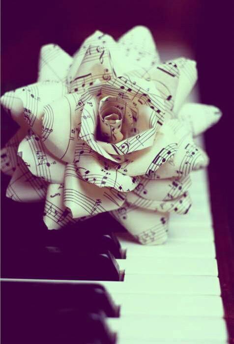 the flower tonee...