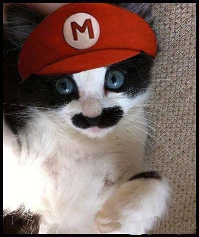 Super Mario Cat...