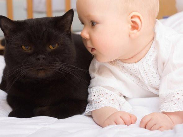 ayo mana yang lebih lucu.. adek bayi ini ato si kucing ..? for more pict www.pulsk.com/u/134585 bantuin ane like FP ini ya http://www.facebook.com/pages/Can-you-make-it/170563119772781?ref=hl