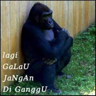 Warning Jgn Diganggu