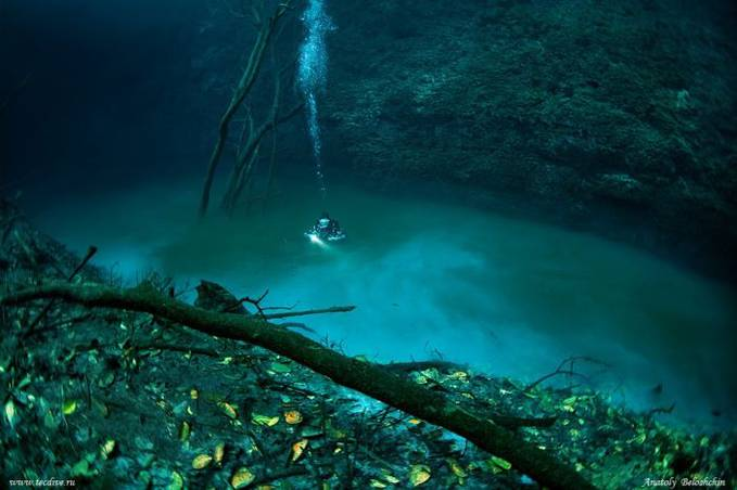 Subhanallah ..... Keajaiban ALLAH yang sangat menakjubkan . ada sungai di dalam laut .