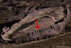 kayu kapal nabi nuh berasal dari jawa?????