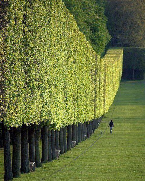 The Château de Sceaux, Paris, France !!! Kerenn ,,, Gimana perasaan kmu jika ada di taman seindah gini ^_^