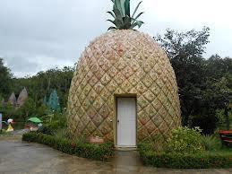 Siapa yang tau ini rumahnya siapa....?? ternyata rumah SPONGEBOB juga ada di dunia nyata WOW.... #spongebob Squerpants