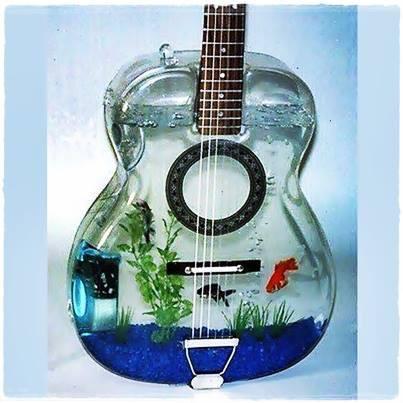 nih gitar bagi pemain gitar yang suka memelihara ikan