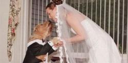 8 Orang yang Pernah Kawin dengan Binatang!!
