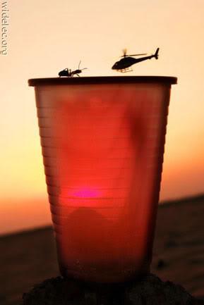 InI fhoto asli tanpa editan. seekor semut melawan elikopter