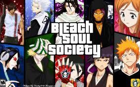 Bleach Soul Society yg berarti Taman Jiwa Tenang jgn lupa wow nya ya sob siip