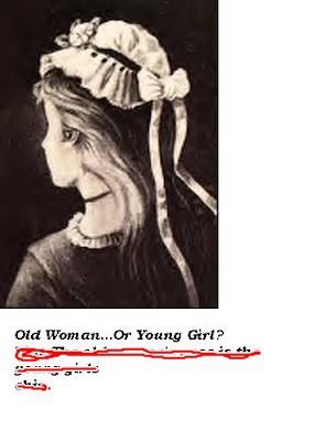 *TES IQ apa yang kamu lihat dari gambar diatas ? seorang wanita tua ? atau gadis cantik ? kalian bisa ? Hebaatt !!