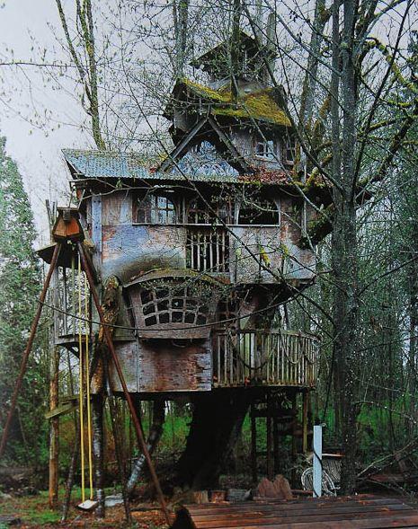 Rumah Pohon Aneh: Redmond Treehouse, Redmond, Washington, AS Kalau rumah pohon sih udah biasa, apalagi di negeri-negeri barat sono. Cuman, kalau rumah pohon yang ini pun pasti orang barat bakal takjub. Alasannya? Agan bisa lihat sendiri dah.