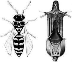 bentuk vespa dengan bentuk lebah