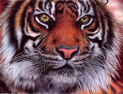 Percaya gak, Pals? Ini bukan foto. Tapi sebuah lukisan yang dibuat oleh artist bernama Samuel Silva dengan hanya menggunakan pulpen dan kertas. Klik WOW jika kamu suka!