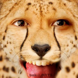 Siang Sob mending kita lihat pict berikut macan bercampur manusia , lucu kaan?? w+c dong