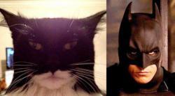 Tokoh Batman merupakan sosok yang bentuknya diinspirasi dari kelelawar, namun siapa s