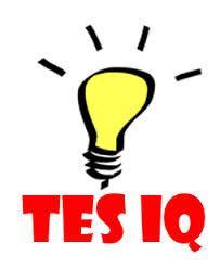 Tes IQ yang paling banyak dijumpai kita.