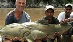 Ikan Lele Bermutasi Jadi Pemangsa Manusia
