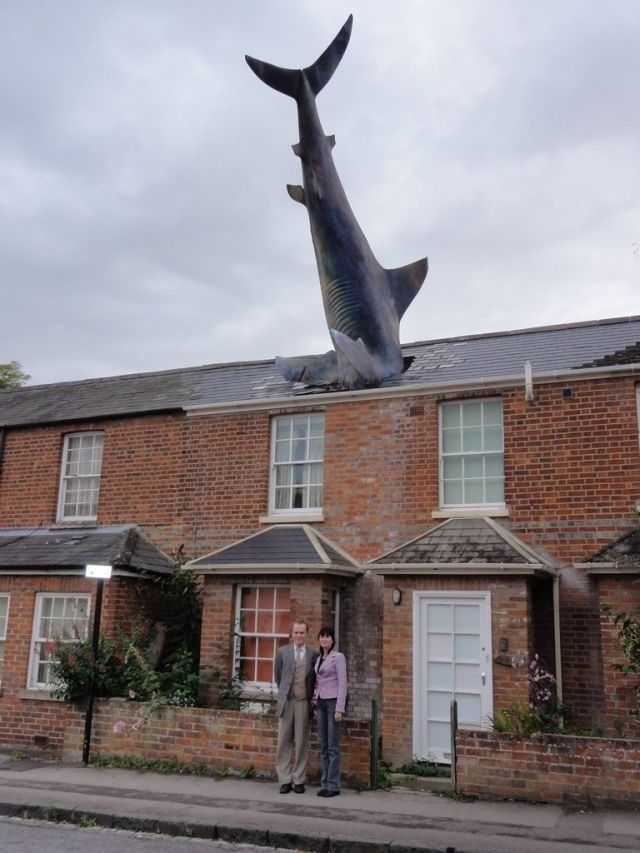 Ada hiu nyasar di atap rumah. Walau boongan, tetep aja ngagetin dan menarik perhatian..
