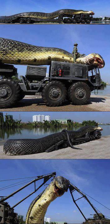Hallo gan ...ane nemu gambar aneh tapi menarik nih ular anaconda naik truck saking gedenya ,gimana kalau nelan manusia ya