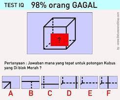 PERTANYAAN YANG MENGASAH OTAK(TEST IQ)